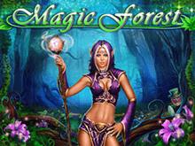 Автомат Magic Forest от Playson с быстрым снятием денег